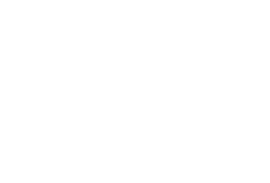Fisher King Enterprises